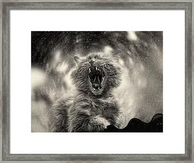 ******* Framed Print