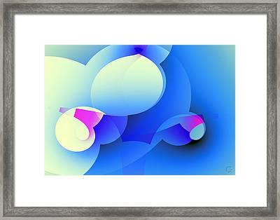 1070 Framed Print