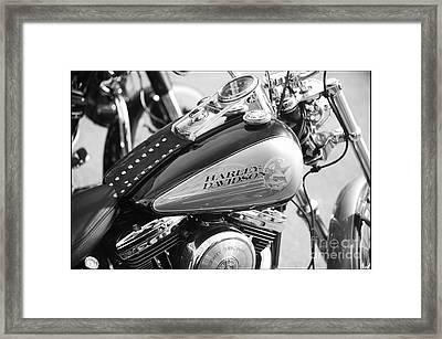 110th Anniversary Harley Davidson Framed Print by Stefano Senise