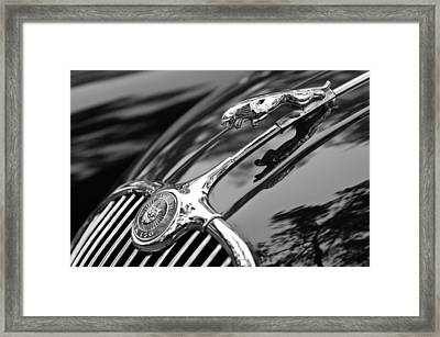 1955 Jaguar Xk 150 Hood Ornament Framed Print by Jill Reger