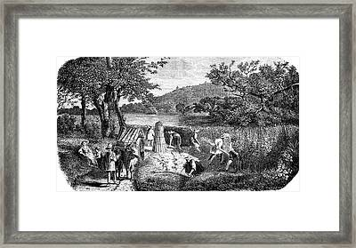 19th Century Hemp Farming Framed Print by Collection Abecasis