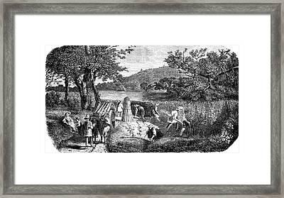 19th Century Hemp Farming Framed Print