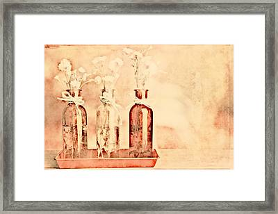 1-2-3 Bottles - R9t2b Framed Print by Variance Collections