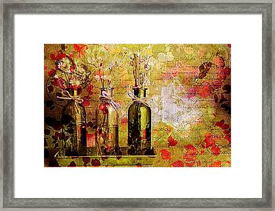 1-2-3 Bottles - S12a203 Framed Print by Variance Collections