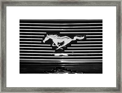 2007 Ford Mustang Grille Emblem Framed Print by Jill Reger