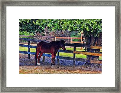Framed Print featuring the photograph 3481-200 by Lewis Mann