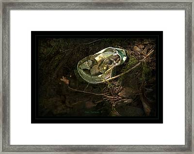 46 G - Not A Good Fit Framed Print by John Stephens