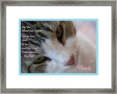 A Big Van Thanks Altered Cats Cyprus Framed Print