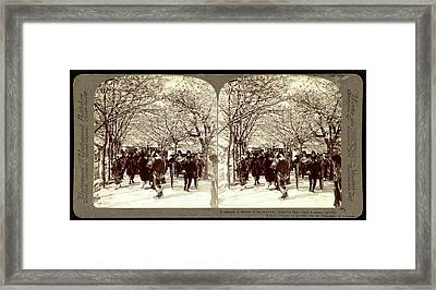 A Canopy Of Cherry Blossoms Over Beautiful Mukojima Avenue Framed Print by Litz Collection