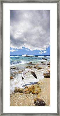A Flight Of Hope Framed Print by Jorgo Photography - Wall Art Gallery