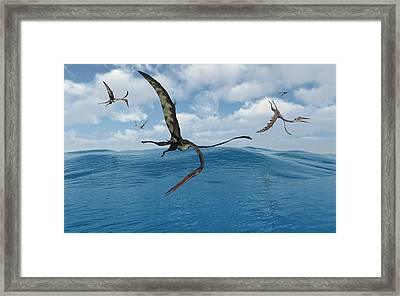 A Flock Of Quetzalcoatlus Fishing Framed Print by Mark Stevenson