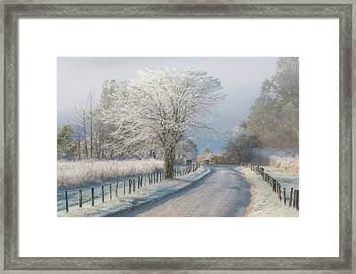 A Frosty Morning Framed Print by Chris Moore