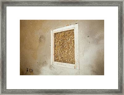 A Green Build House Framed Print by Ashley Cooper