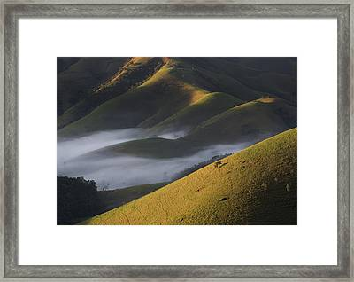 A Low-hanging Mist In The Early Morning Framed Print