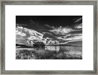 A New Experience Framed Print