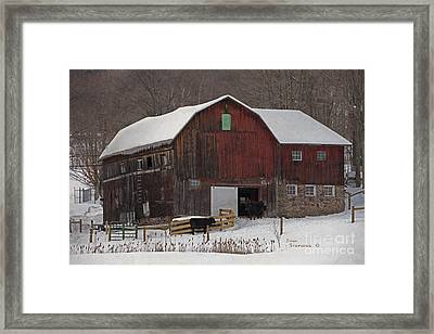 A New Fence For The Cows Framed Print by John Stephens