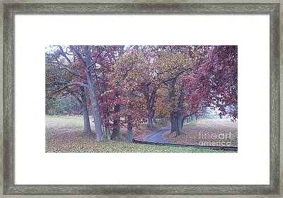 A Path To Follow Framed Print