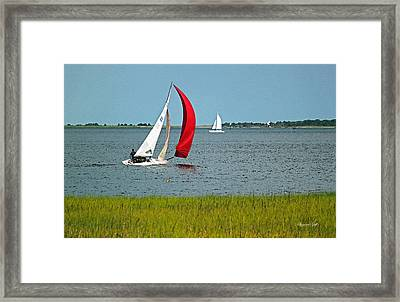 A Perfect Day For Sailing Framed Print