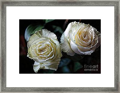 A Perfect Pair Framed Print