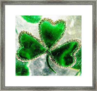 A Shamrock On Ice Framed Print