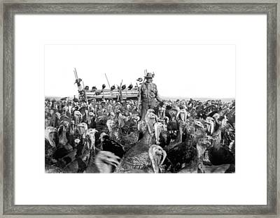 A Turkey Rancher Framed Print