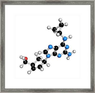 Abacavir Hiv Drug Molecule Framed Print by Molekuul