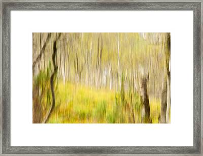 Abstract Forest Scenery  Framed Print by Gry Thunes