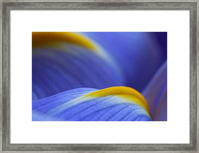 Abstract Framed Print by Juergen Roth
