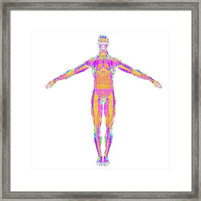 Abstract Polygonal Model Of A Man Framed Print by Pasieka