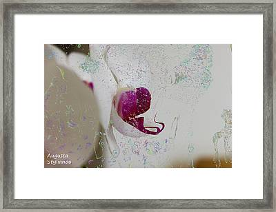 Abstract White Orchid Framed Print by Augusta Stylianou