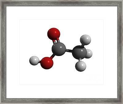 Acetic Acid Molecule Framed Print