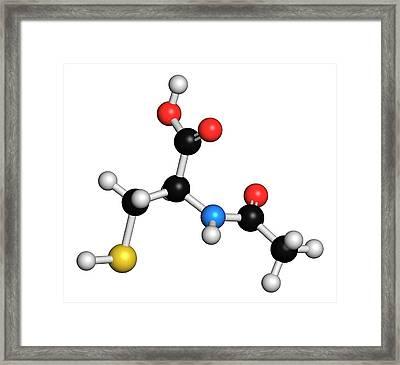 Acetylcysteine Mucolytic Drug Molecule Framed Print by Molekuul