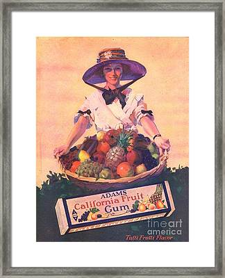 Adams California Fruit Gum 1910s Usa Framed Print by The Advertising Archives