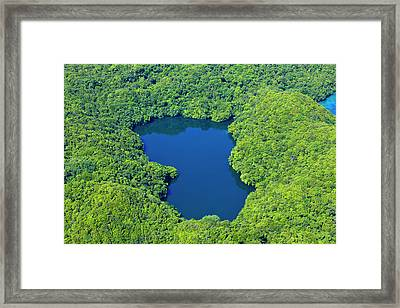 Aerial View Of Jelly Fish Lake Framed Print by Keren Su