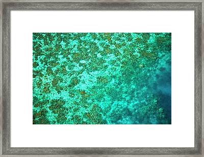 Aerial View Of The Great Barrier Reef Framed Print