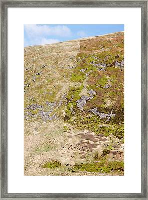Affect Of Grazing On Moorland Vegetation Framed Print