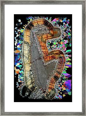 Agate. Polarised Light Micrograph Framed Print
