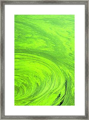 Algae On The Water, Indhar Lake Framed Print by Keren Su