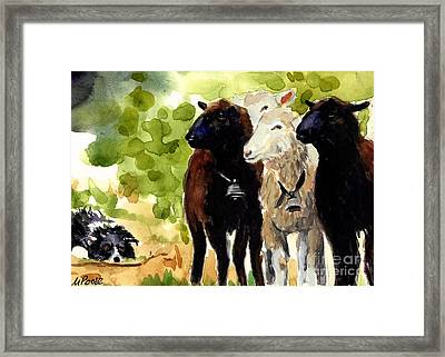 All Eyes Framed Print by Molly Poole