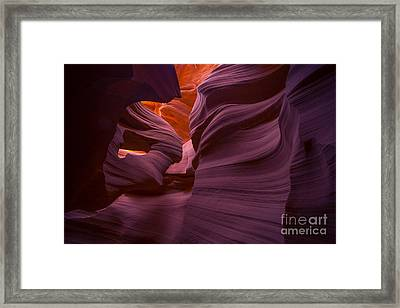 Alluring Beauty Framed Print by Marco Crupi