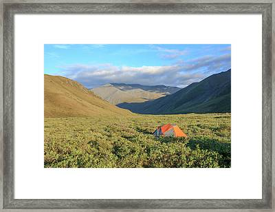 Along Kongakut River Framed Print by Tom Norring