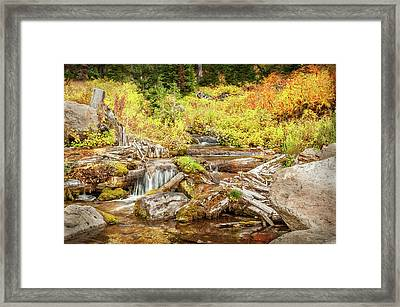 Alpine Waterfall Framed Print by Ramona Murdock
