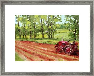 Al's Garden Framed Print