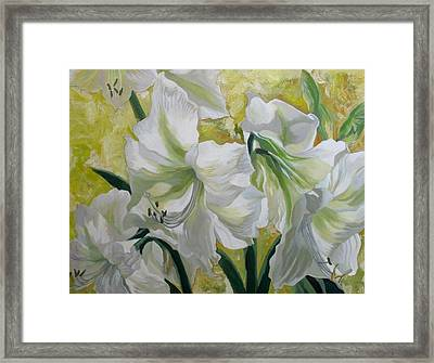 Amaryllis With Yellow Framed Print by Alfred Ng