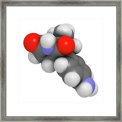 Aminoglutethimide Anti-steroid Molecule Framed Print