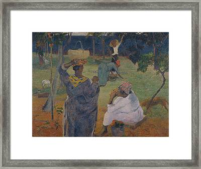 Among The Mangoes At Martinique Framed Print by Paul Gauguin