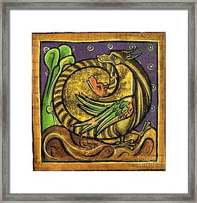 Amphisbaenae, Legendary Creature Framed Print
