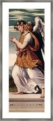 An Angel Panel Framed Print by Giovanni Battista Moroni