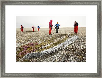 Ancient Whale Jaw Bones On Raised Beach Framed Print by Ashley Cooper