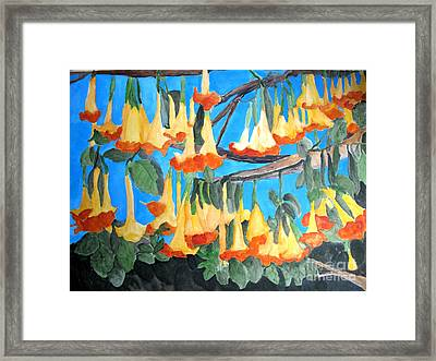 Angel Trumpets Framed Print by Sandy McIntire
